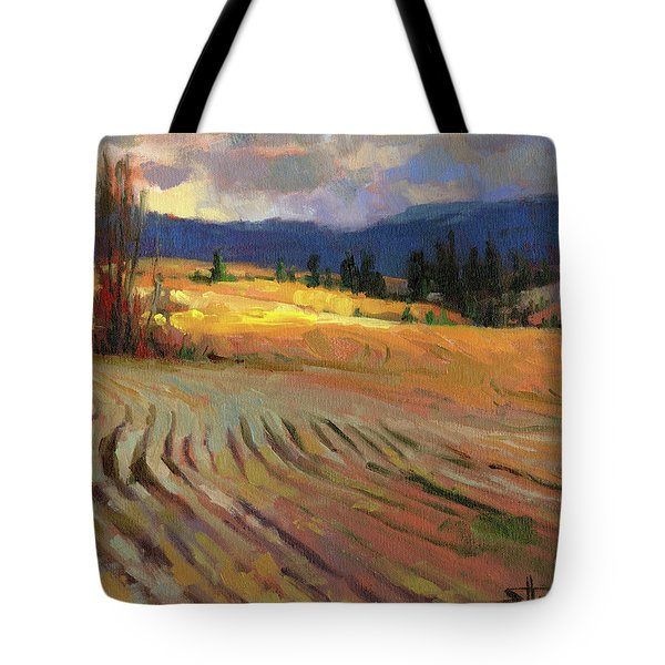 Break In The Weather Tote Bag
