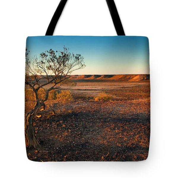 Breakaway Dawn Tote Bag by Mike  Dawson