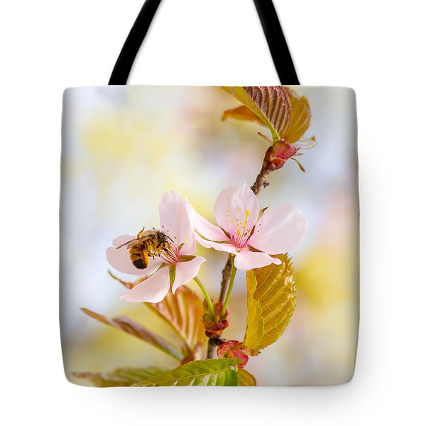 Tote Bag featuring the photograph Breakfast At Sakura by Alexander Senin