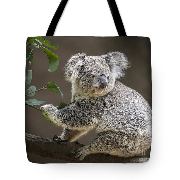 Breakfast Tote Bag by Jamie Pham