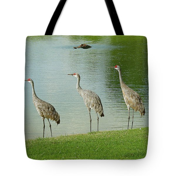 Breakfast Lunch And Dinner Tote Bag by Adele Moscaritolo