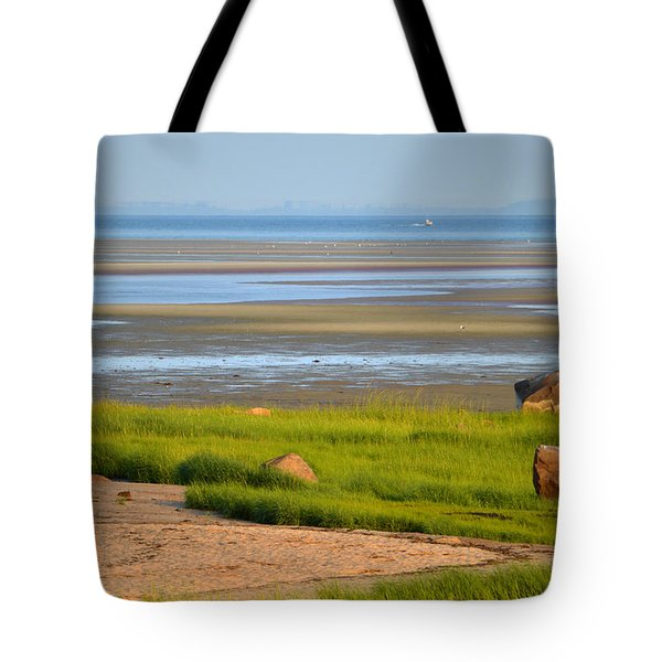 Breakwater Beach At Low Tide Tote Bag