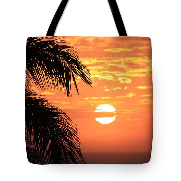 Breathtaking Tote Bag by Karen Nicholson