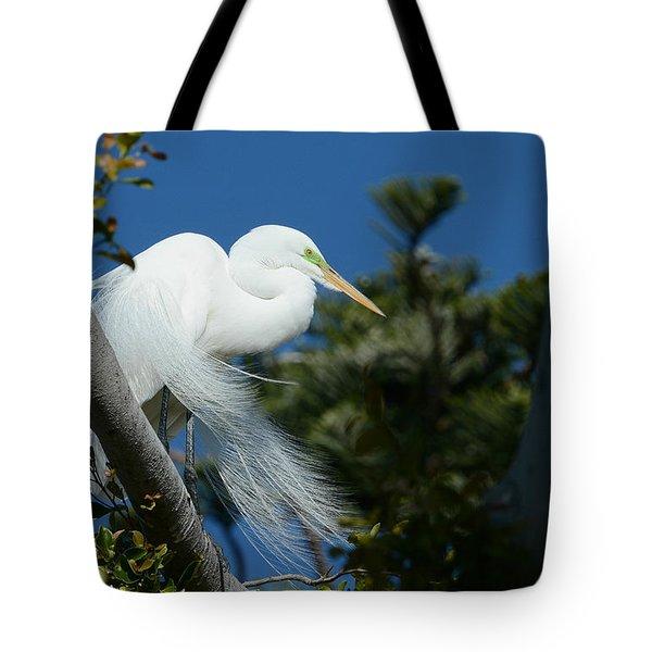 Breeding Beauty Tote Bag by Fraida Gutovich