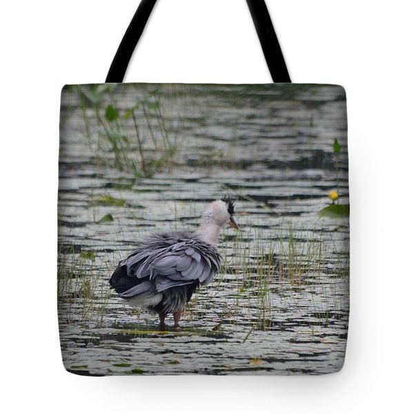 Breezy Blue- Great Blue Heron Tote Bag by David Porteus