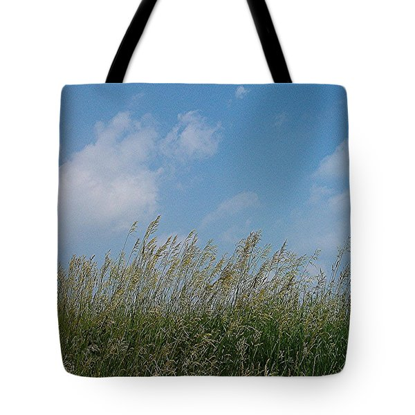 Tote Bag featuring the photograph Breezy Day by Sara  Raber