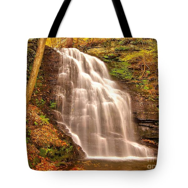 Bridal Veil Falls Tote Bag by Nick Zelinsky