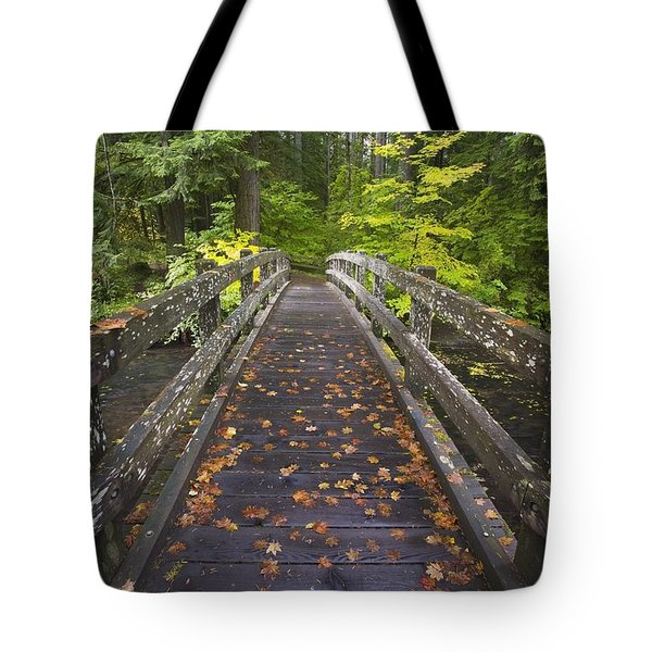 Bridge In A Park Tote Bag by Craig Tuttle