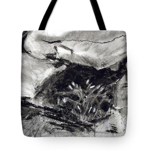 Bridget's Well Tote Bag