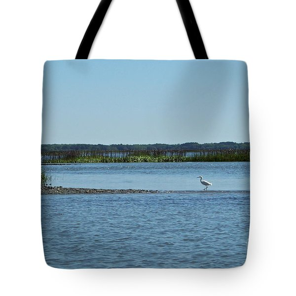 Tote Bag featuring the photograph Bridging The Gap by Carol  Bradley