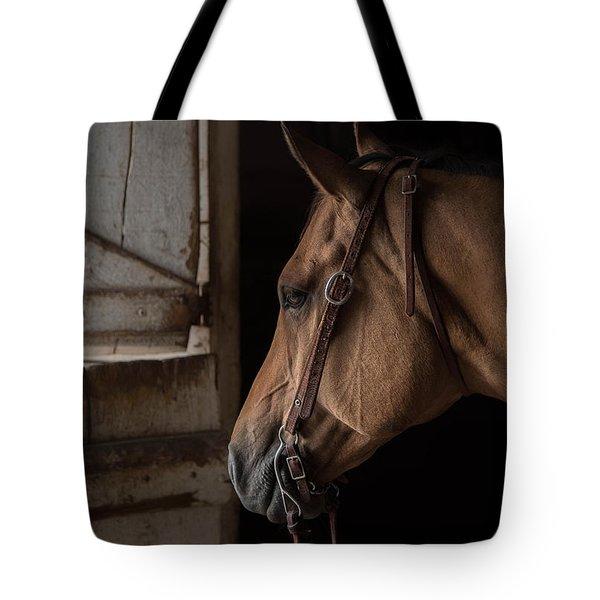 Bridled Tote Bag