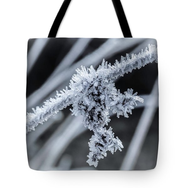 Briefly Beautiful Tote Bag