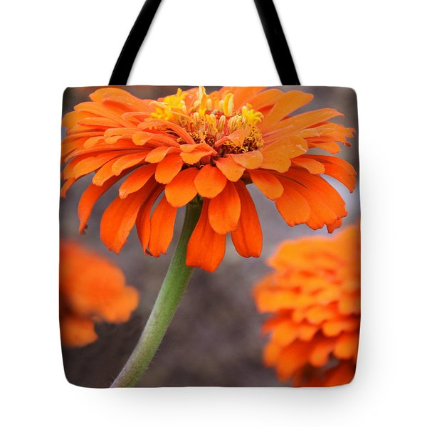 Bright And Beautiful Tote Bag by Kathy M Krause