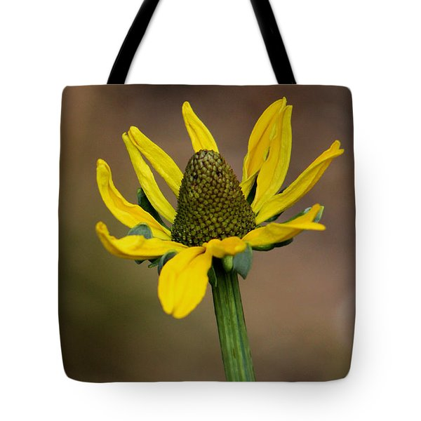 Tote Bag featuring the photograph Bright And Shining by Deborah  Crew-Johnson