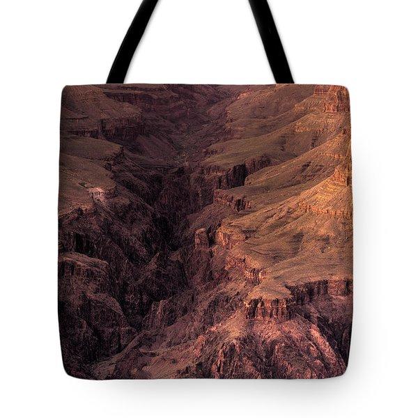 Bright Angel Canyon Grand Canyon National Park Tote Bag by Steve Gadomski