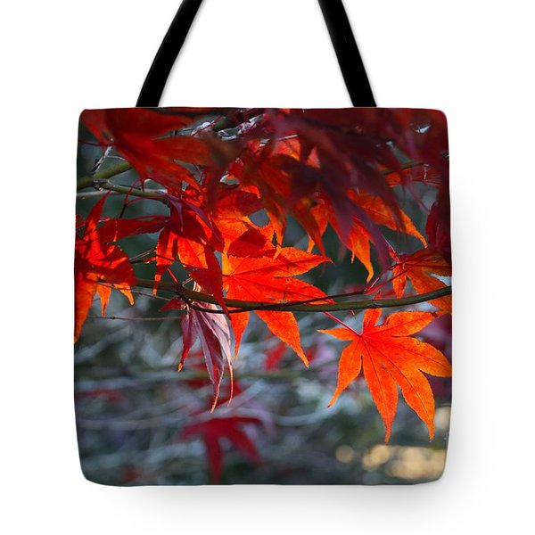 Bright Autumn Leaves Tote Bag
