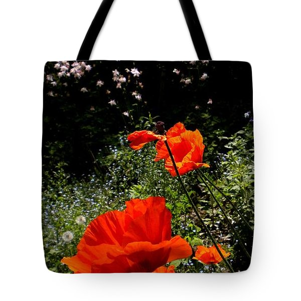 Bright Orange Tote Bag by Renate Nadi Wesley