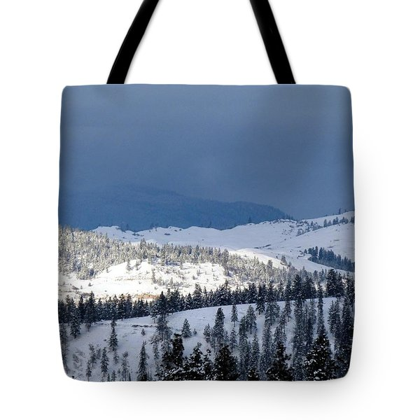 Tote Bag featuring the photograph Bright Patch Of Sunshine by Will Borden