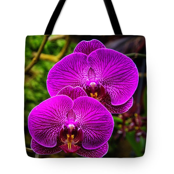 Bright Purple Orchids Tote Bag by Garry Gay