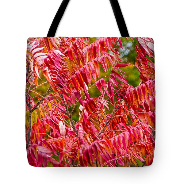 Bright Red Leaves Tote Bag