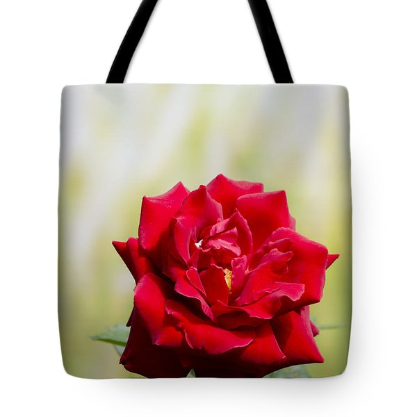 Bright Red Rose Tote Bag by Perry Van Munster