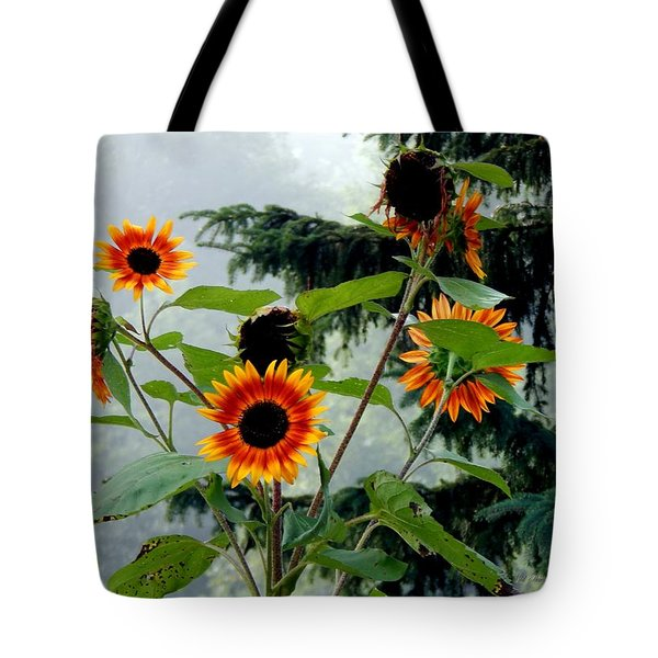 Bright Spots On A Foggy Morning Tote Bag
