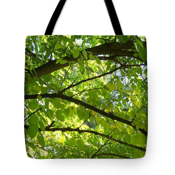 Bright Treetop  Tote Bag