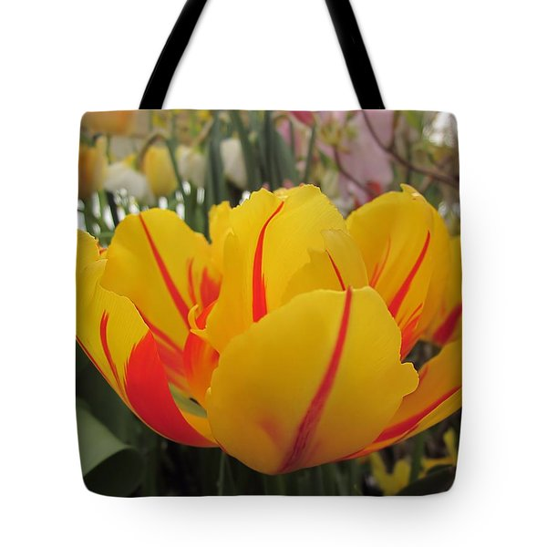 Bright Tulip Tote Bag by MTBobbins Photography