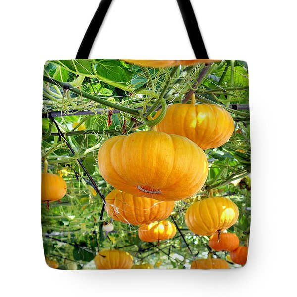 Bright Yellow Cheese Gourds Tote Bag