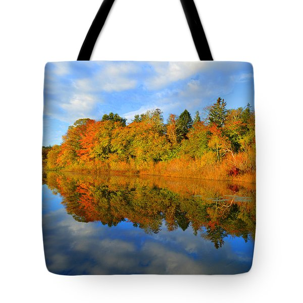 Brilliance Of Autumn Tote Bag by Dianne Cowen