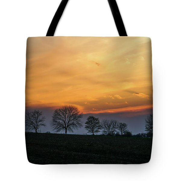 Brilliant Canopy Tote Bag