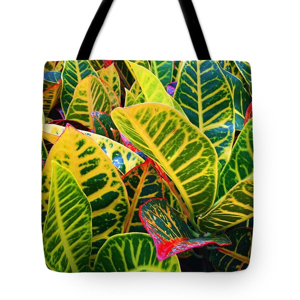Brilliant Crotons Tote Bag by Kay Gilley