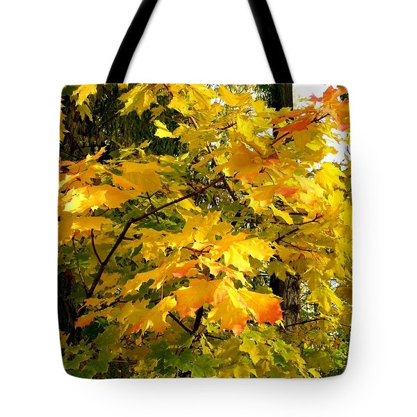 Tote Bag featuring the photograph Brilliant Maple Leaves by Will Borden