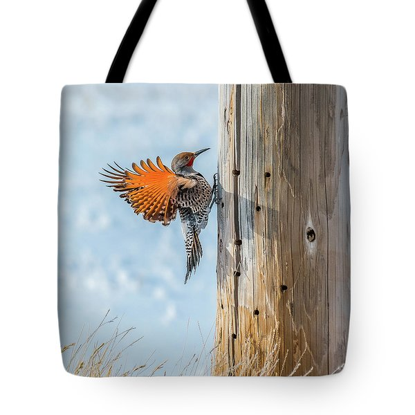Brilliant Northern Flicker Woodpecker Tote Bag by Yeates Photography