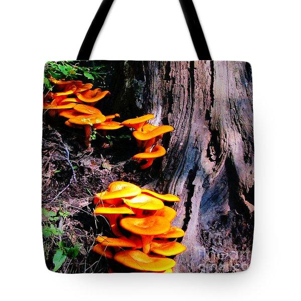 Brilliant Orange Tote Bag