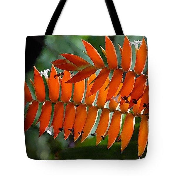 Brilliant Orange Nature Tote Bag by Steve Archbold
