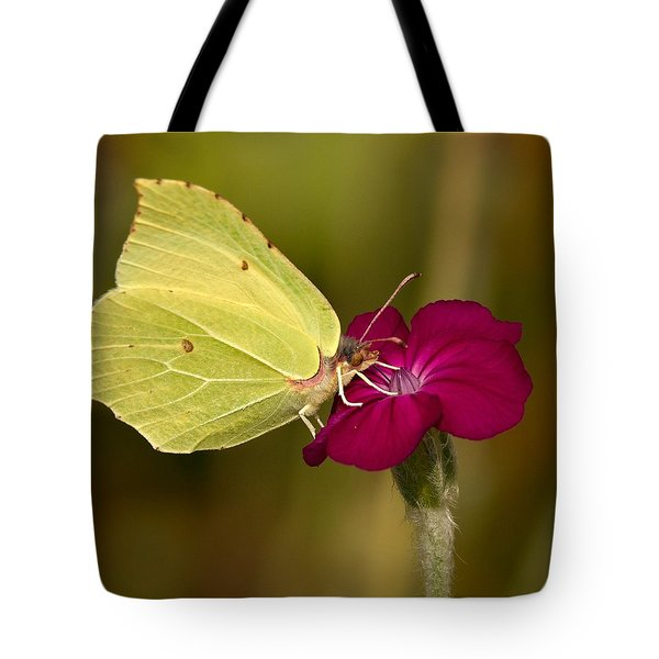 Tote Bag featuring the photograph Brimstone 1 by Jouko Lehto