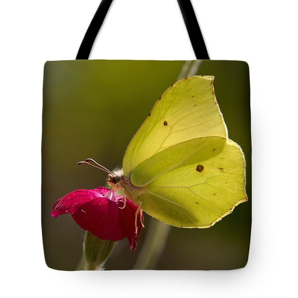 Tote Bag featuring the photograph Brimstone 2 by Jouko Lehto