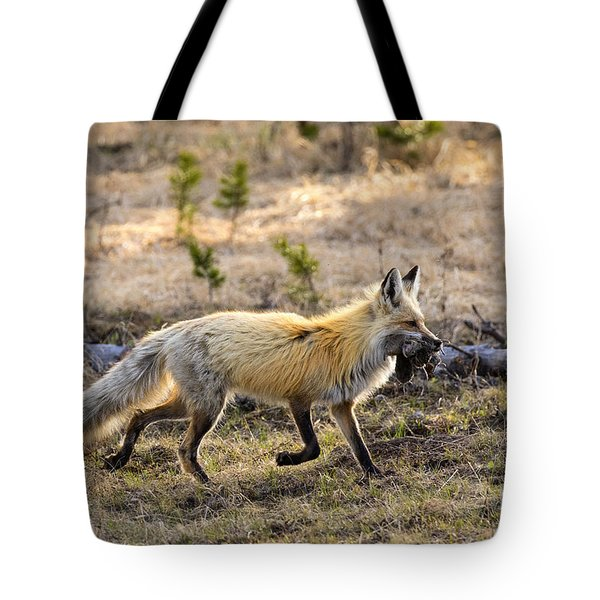 Tote Bag featuring the photograph Bringing It Home by Aaron Whittemore