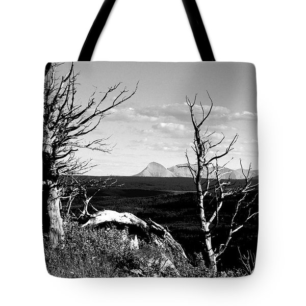 Bristle Cone Pines With Divide Mountain In Black And White Tote Bag