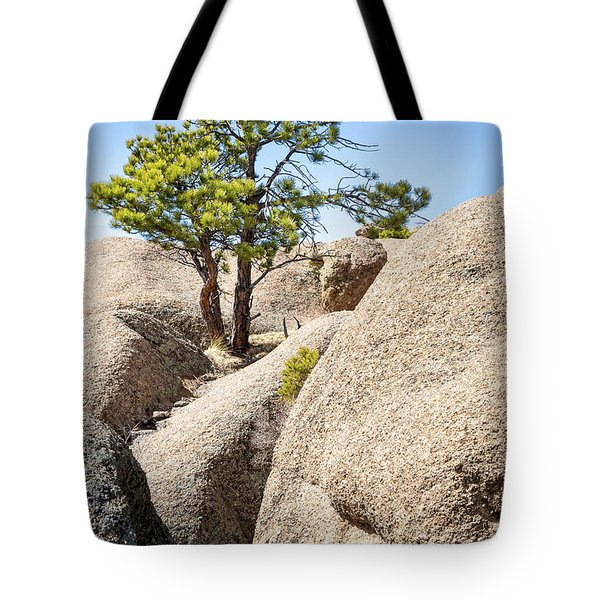Tote Bag featuring the photograph Bristlecone In Granite 2 by Tim Newton