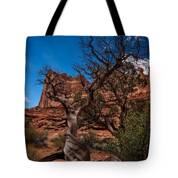 Bristlecone On Park Avenue Tote Bag