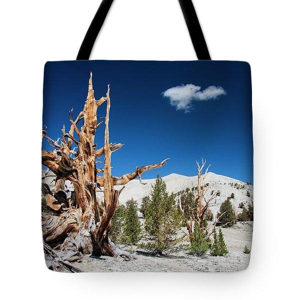 Bristlecone Pine - Pinus Longaeva Tote Bag