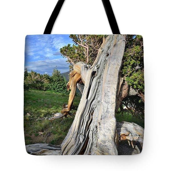 Bristlecone Pine Scenic Area Tote Bag
