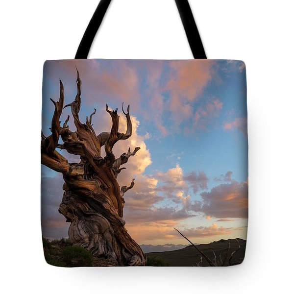 Bristlecone Pine Sunset Tote Bag
