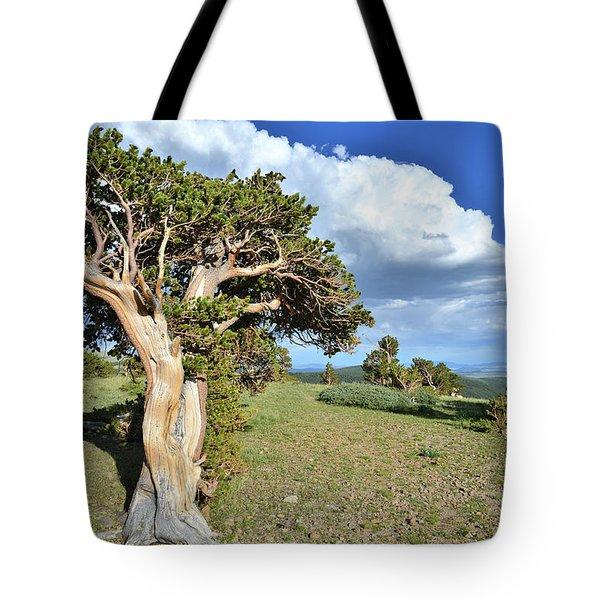 Bristlecone Ridge Tote Bag