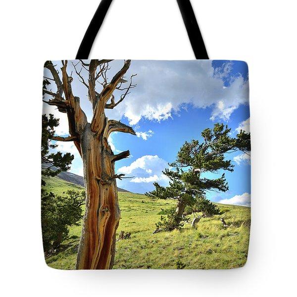Bristlecone Scenic Area Tote Bag