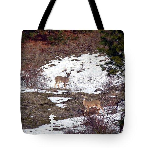 British Columbia Deer  Tote Bag