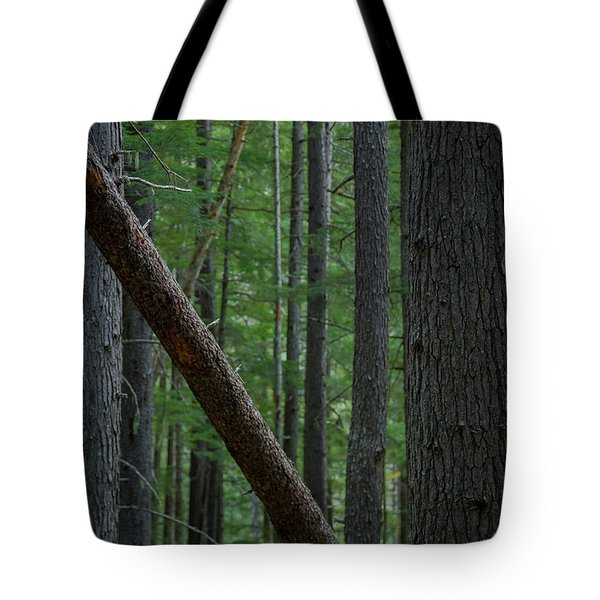 British Columbia Forest Tote Bag