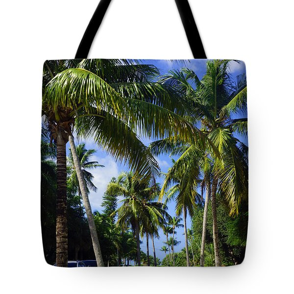 Broad Avenue South, Old Naples Tote Bag